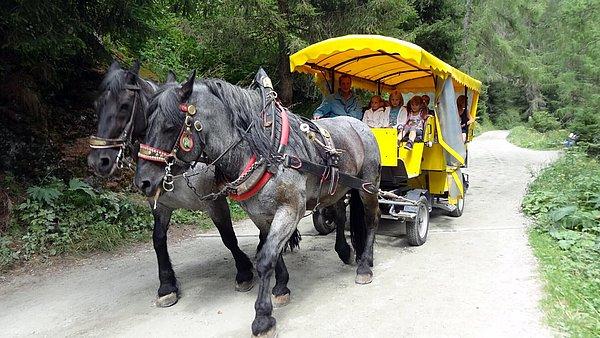 Pferdekutschenfahrt mit Egger Joachim zu den Umbalfällen