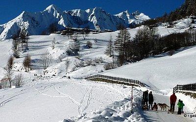 praegraten-winter-bichl-skigebiet-winterwandern (3).JPG