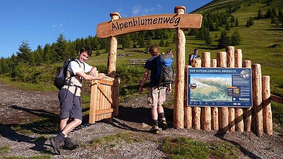 Alpenblumenweg © Nationalpark Hohe Tauern, Naturschutzgebie