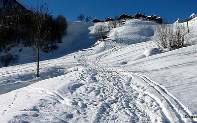 praegraten-winter-bichl-skigebiet-winterwandern (4).JPG