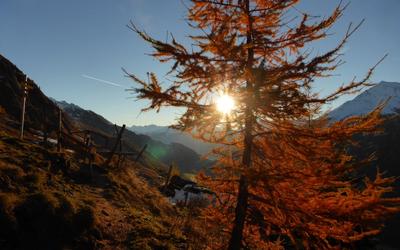 Urlaub in Osttirol