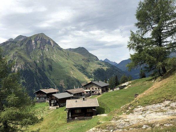 Innere Steiner Alm 1.770 m