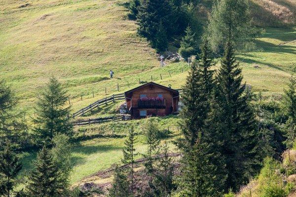 Almhütte Goisnalm 1.650 m Virgen