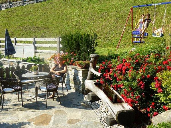 Bethuberhof  - Urlaub am Bauernhof